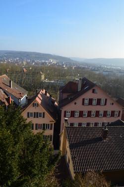 Tübingen over view