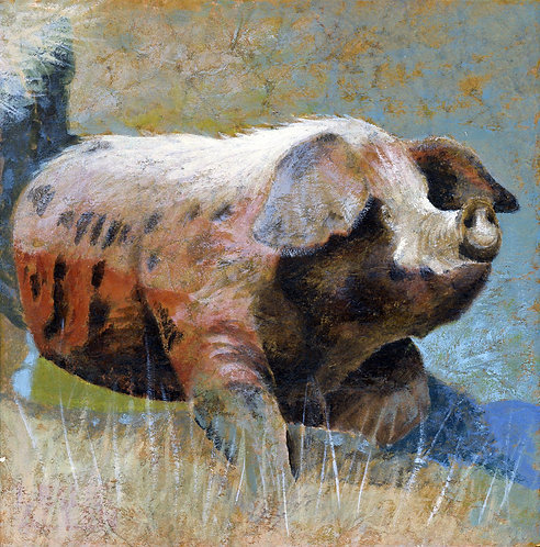 Swt Pig: SMALL PRINT