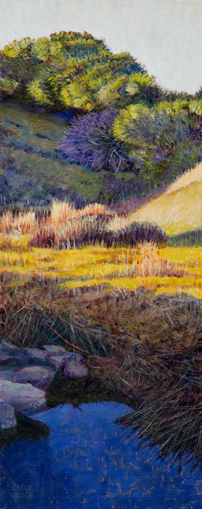 """Spring, Millerton Creek Ranch"""