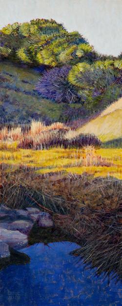 "SOLD ""Spring, Millerton Creek Ranch"""