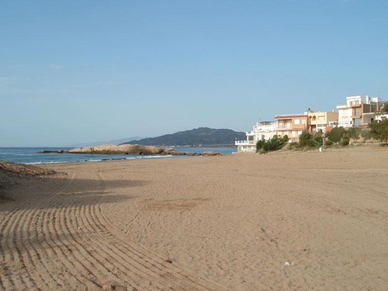 beach-rabiosa_800x600.jpg