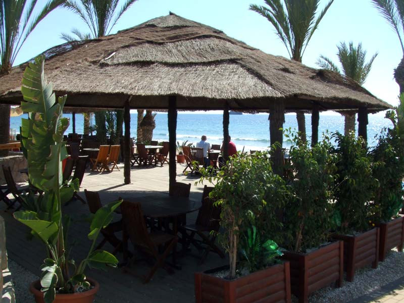 beachbarcalypso_l.jpg