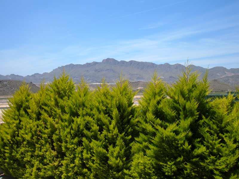 view1_l.jpg