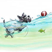 illustration of scottie dog swimming