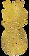 ananas logo.png