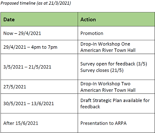 20210321 Strategic Plan Timetable V2.png