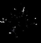 Albuquerque Vaulters logo