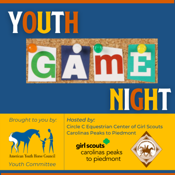 AYHC Youth Game Night