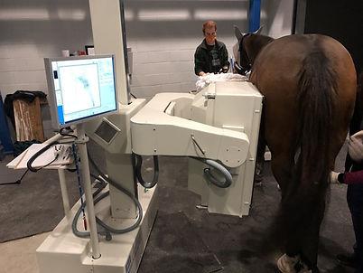 TN equine hospital.jpg