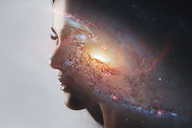 The universe inside us, the profile of a