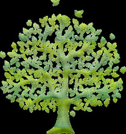 tree-5334778_640_edited_edited_edited.pn