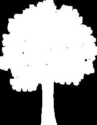 Mind Tree.png