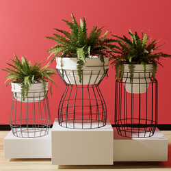 Wire Plant Pot Holder