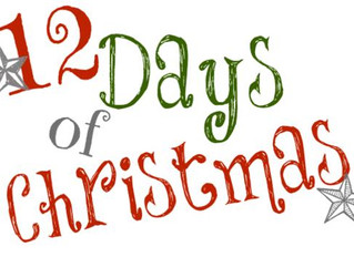 The 12 Days of Christmas Are Coming...