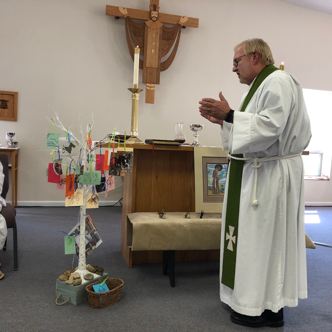 Fr. Chris Blessing Animal Tree.JPG