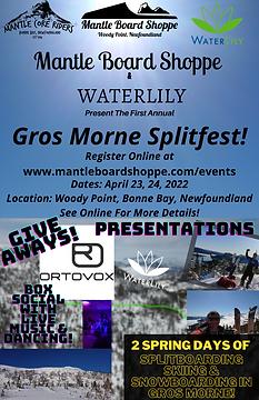 Splitfest poster (2).png