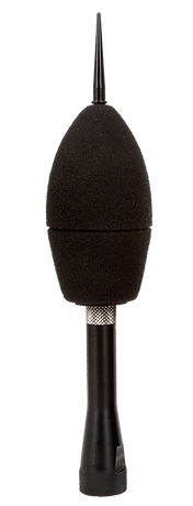 Outdoor mic.png