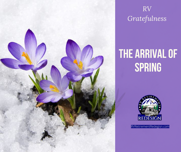 Arrival of Spring (1).png