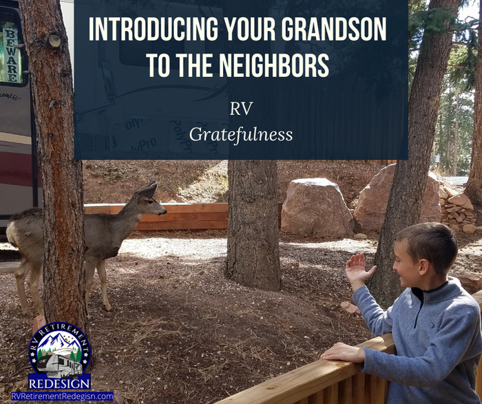 Introducing your Grandson to the neighbo