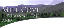 Mill Cove Logo.png