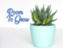 RoomToGrowGraphic.jpg
