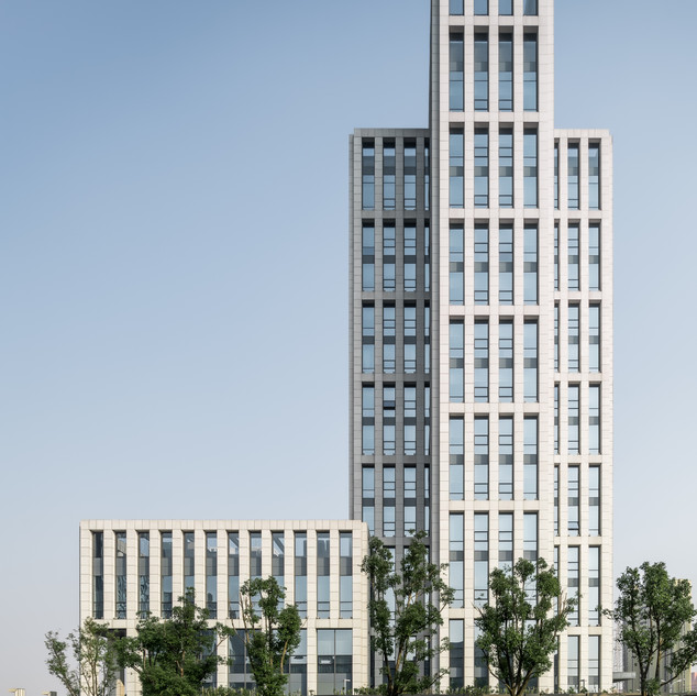Nongfa Government Office Tower 1
