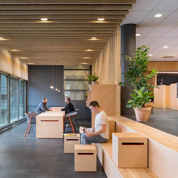 Four workplaces in the Netherlands built with a focus on sustainable, circular design