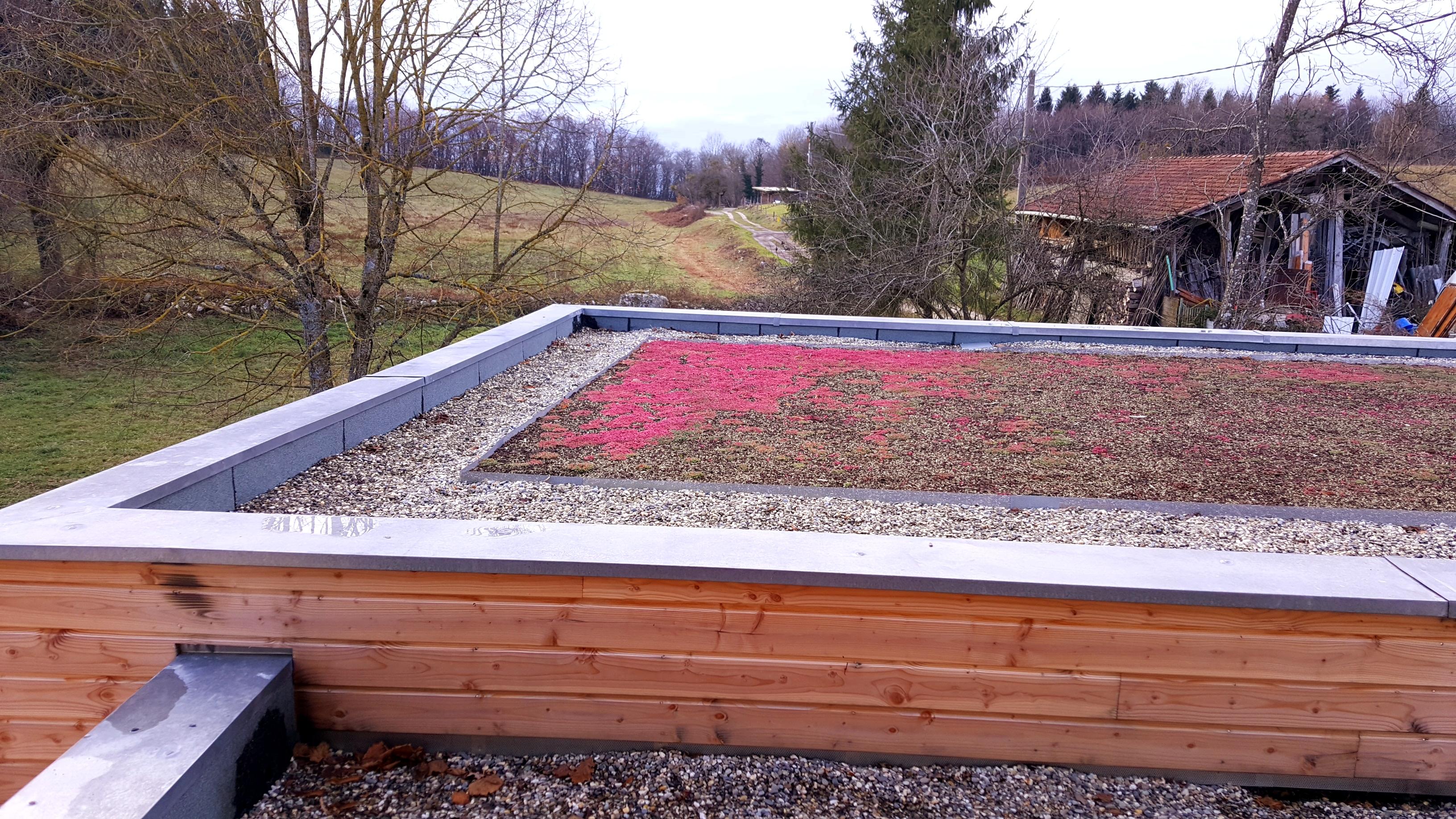 Étanchéité toiture végétalisée