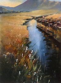 Bog Water VI