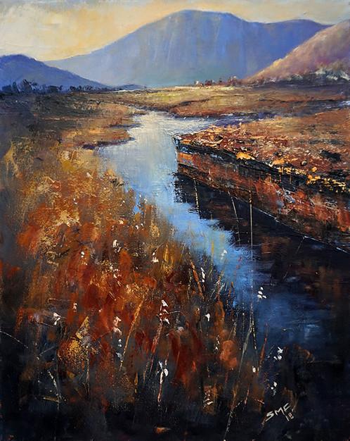 Bog Water, Connemara