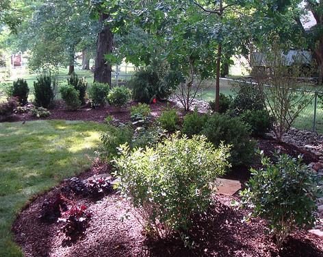 Backyard (27).jpg