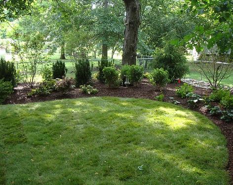 Backyard (45).jpg