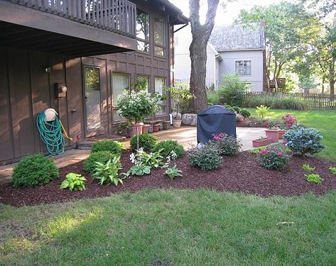Backyard (36).jpg