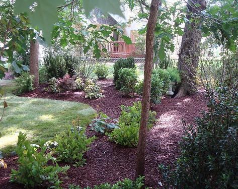 Backyard (44).jpg