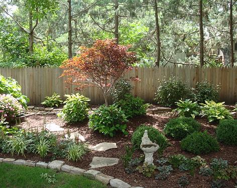 Backyard (37).jpg