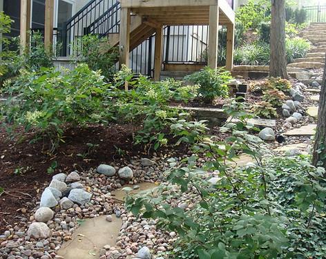 Backyard (39).jpg