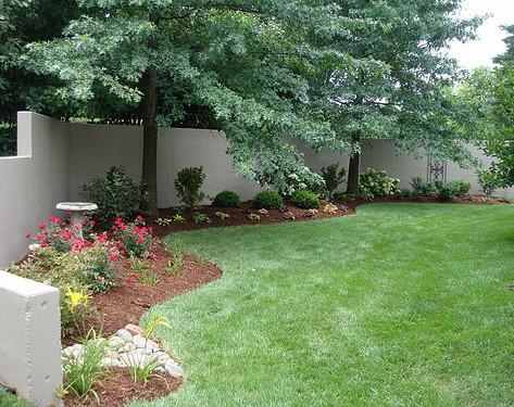 Backyard (30).jpg