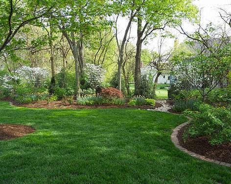 Backyard (35).jpg