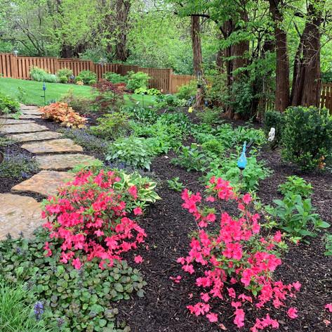 Backyard (54).jpg