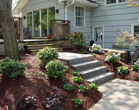 Backyard (42).jpg