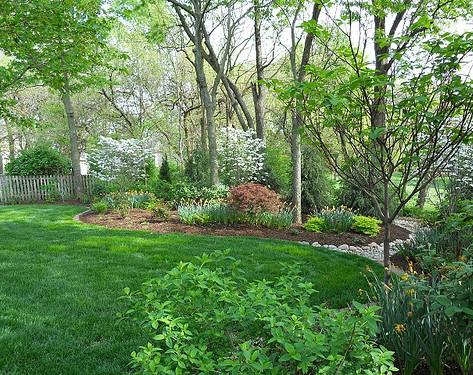 Backyard (50).jpg