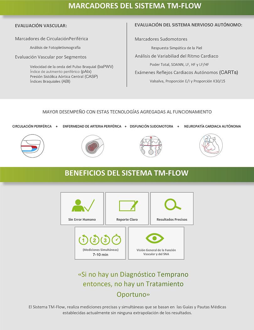 Sistema TM-Flow 4.png