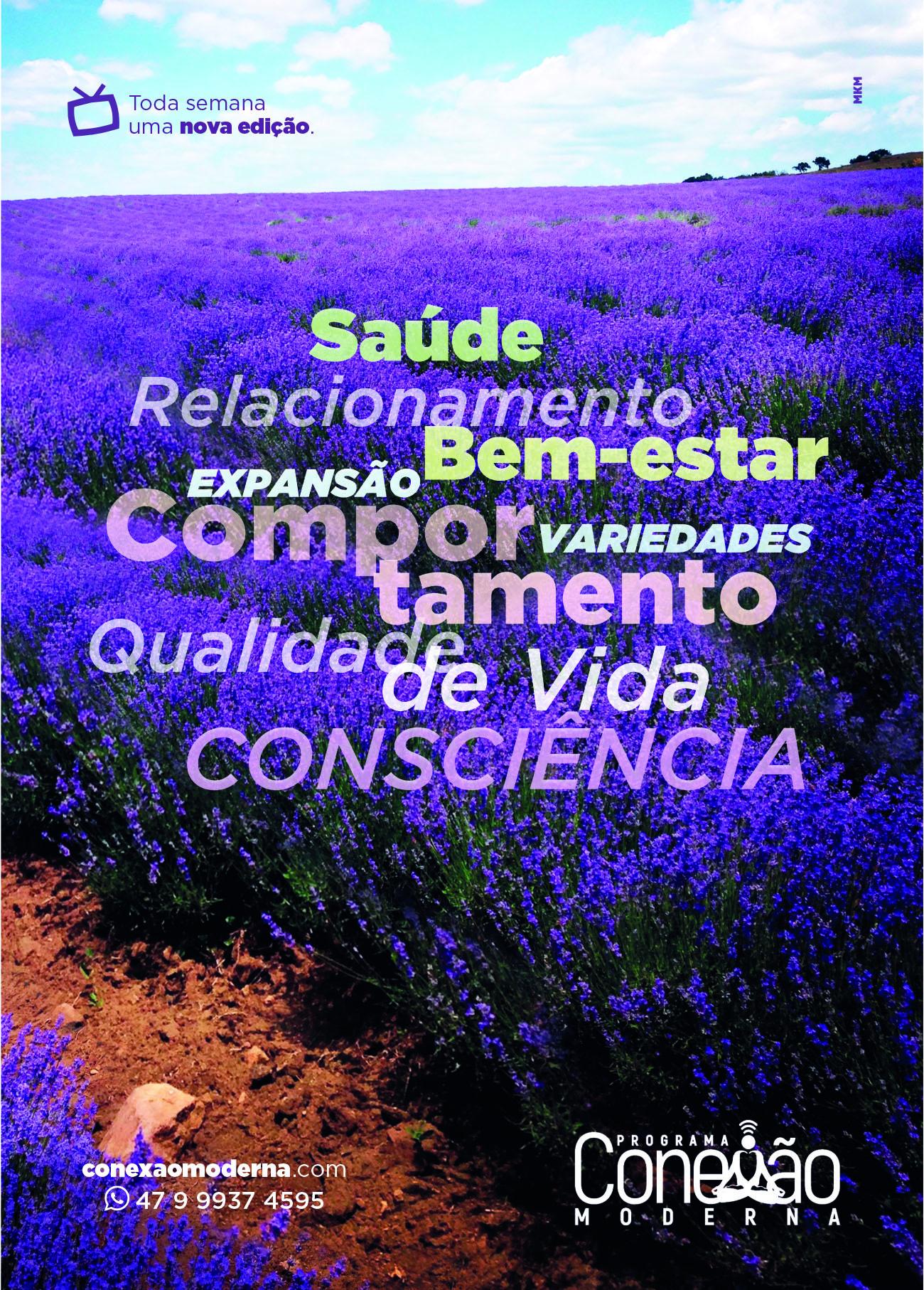 Revista Conexão Moderna