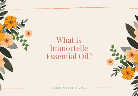 What is Immortelle, aka Helichrysum, Essential Oil?