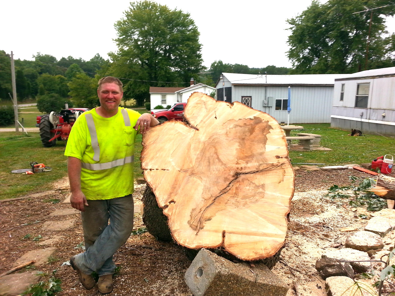 Tree Service Estimates