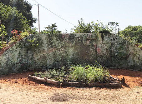 """""""Art has a Scent"""" - group exhibition and a New Outdoor Installation"""