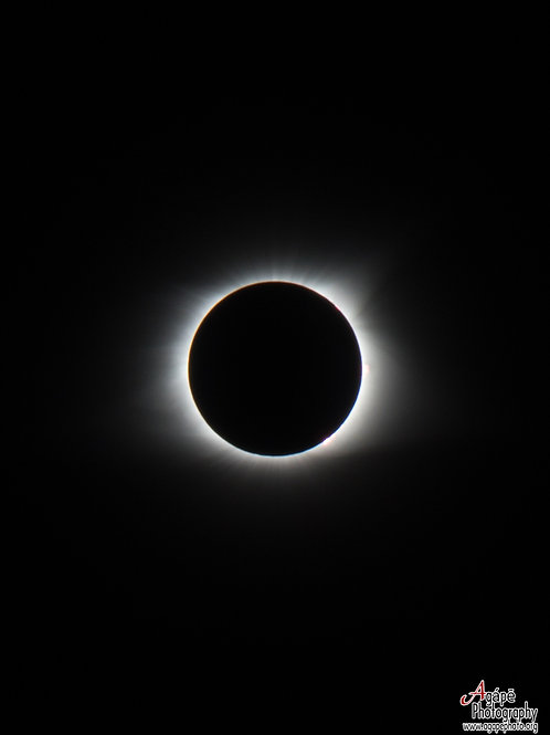 Solar Eclipse in totality (Black and White)