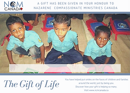 gift_of_life_02.png