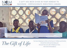 gift_of_life_03.png
