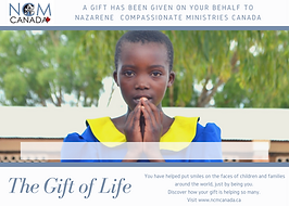 gift_of_life_01.png